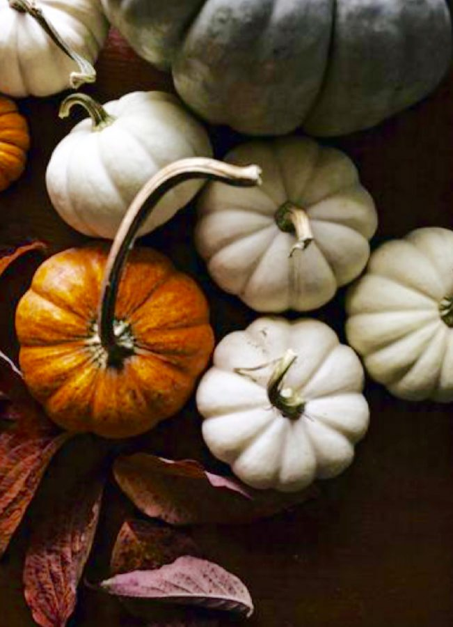 Variety of Halloween events set for October